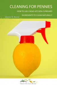 cleaningforpenniescover2-200x3001