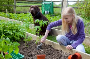 Girl Gardening With Dog